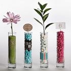 Personalized Bud Vase Wedding Favors